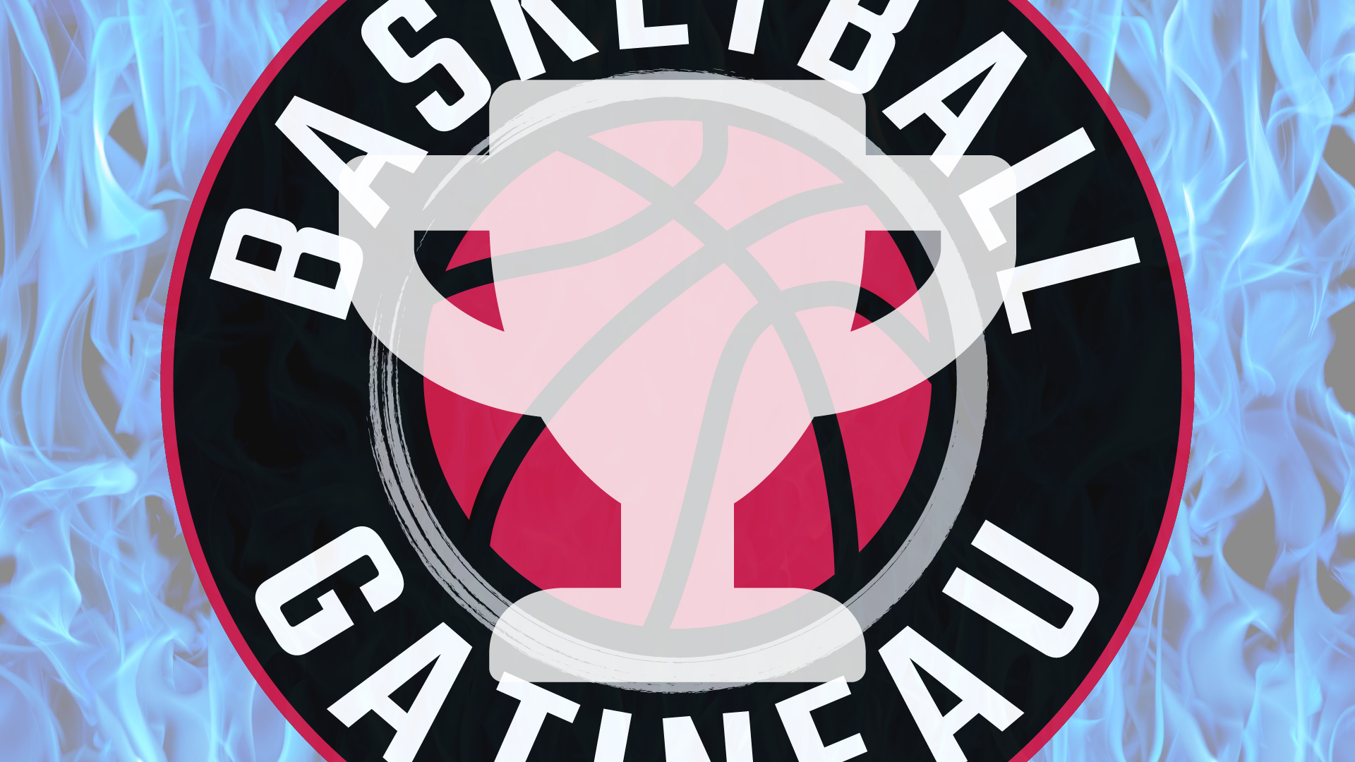 Programme compétitif - Association de basketball de Gatineau